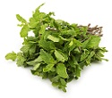 Mint leaves पुदीना