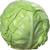 Cabbage गोभी