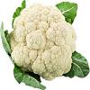 Cauliflower गोभी