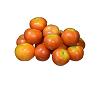 Desi Tomato देसी टमाटर