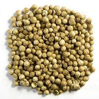 Dhaniya Seeds धनिया