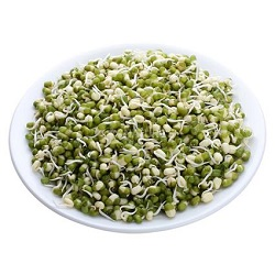 Sprouts Moong