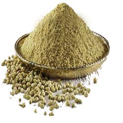 Pure Dhaniya Powder