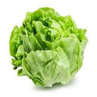 Lettuce Veg