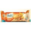 Britannia NutriChoice Oats Cookies