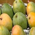Kesar Mango Premium Box