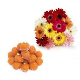gerbera flower with Ladu1 kg