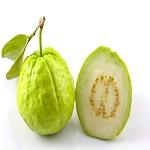 Amrood Guava
