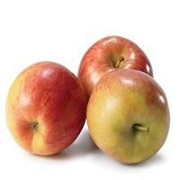 Indian Himchali apple