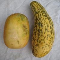 Kachra Bada